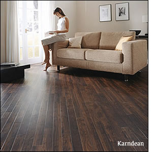 Beautiful Karndean Vinyl Wood Plank Floor